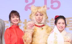 完成披露試写会レポートを公開!映画「トラさん~僕が猫になったワケ~」