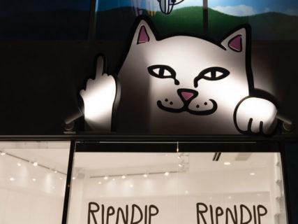 中指を立てた猫がキュート♪ RIPNDIP(リップンディップ)の国内初となる旗艦店が原宿にオープン