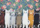 8年連続で殺処分ゼロの千代田区「ちよだ猫まつり2019」を2/16〜開催