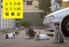 4人の作家+動物学者でネコの不思議に迫る新刊「ヒミツのヒミツの猫集会」