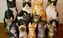 猫とお洒落なライフスタイルを提案する「ネコのいる暮らし展」第5弾が渋谷で開催