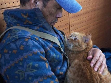 柴咲コウと小林薫が大河ドラマで共演した茶トラ猫と再開!映画「ねことじいちゃん」最新カット