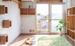 話題の「ネコ家具」も間近で見れる!猫仕様にカスタマイズされたモデルルームを公開