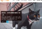 迷子猫を探すのにも使える!ペット捜索のプロが使う機材をレンタルできるサービスが登場