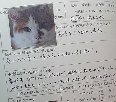 ペットの猫用手帳「ねこライフ手帳 ベーシック」の使用イメージ