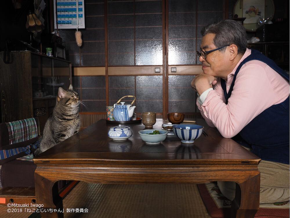 猫の大吉とじいちゃん役の立川志の輔 by 岩合光昭写真展「ねことじいちゃん」