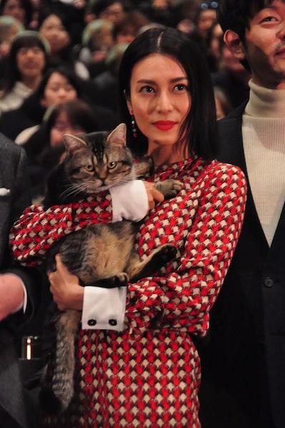 猫のベーコンを抱っこする柴咲コウ by 映画「ねことじいちゃん」の完成披露試写会イベント