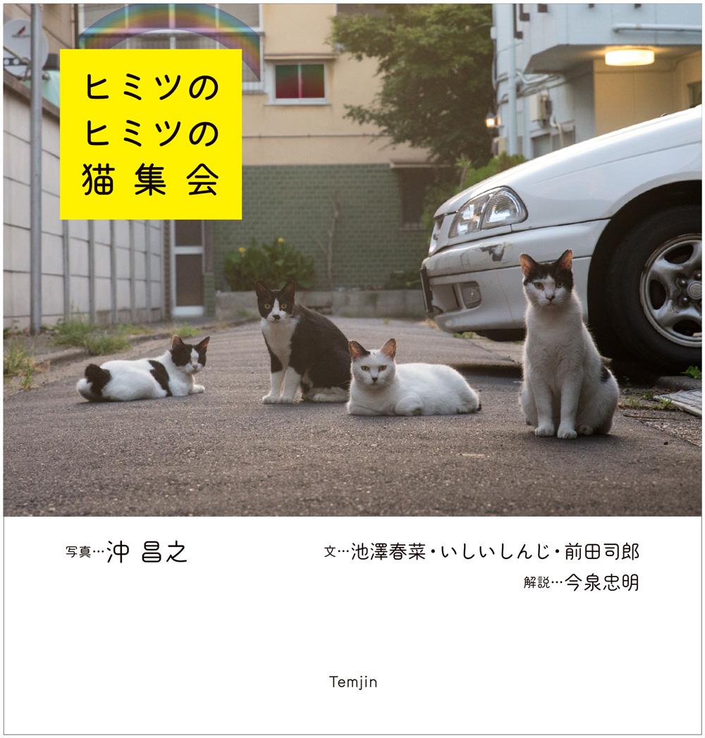 書籍「ヒミツのヒミツの猫集会」の表紙