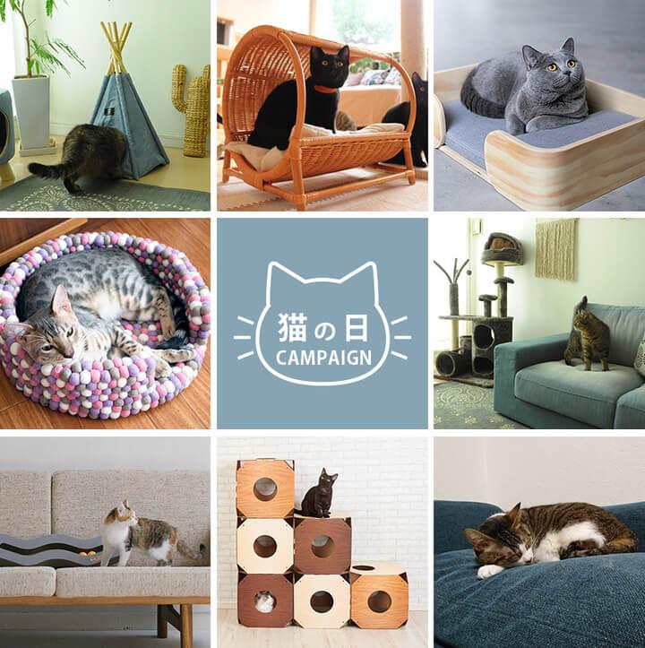インテリア通販サイトの「uminecco(ウミネッコ)」の猫の日キャンペーン