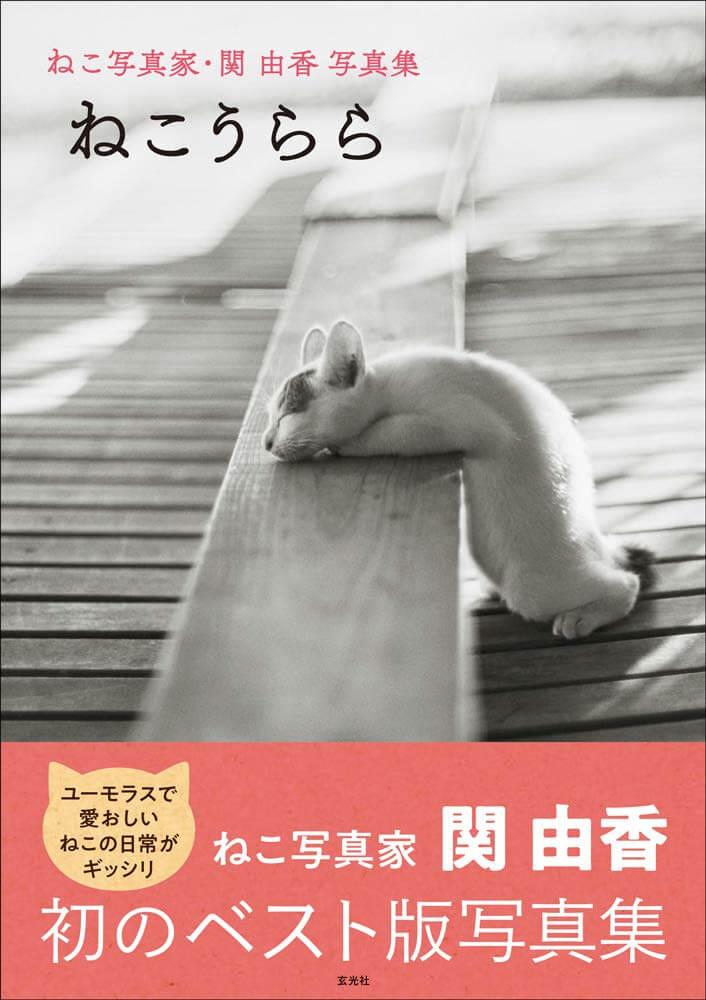 関由香さんのベスト版写真集「ねこうらら」の表紙