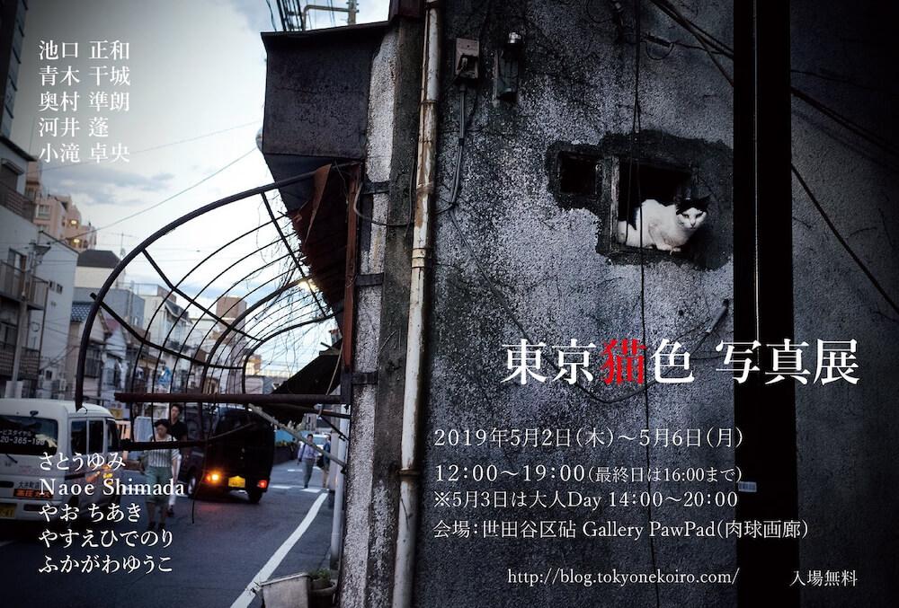 写真家集団「東京猫色」写真展 in Gallery PawPad(肉球画廊)のメインビジュアル