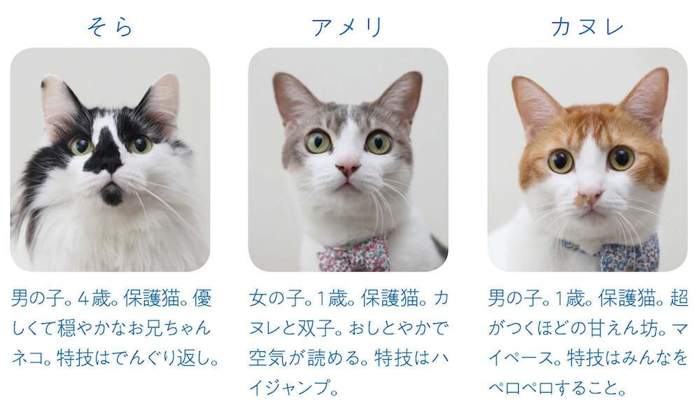 3兄妹の猫「そら、アメリ、カヌレ」byRiepoyonn(たむらりえ)