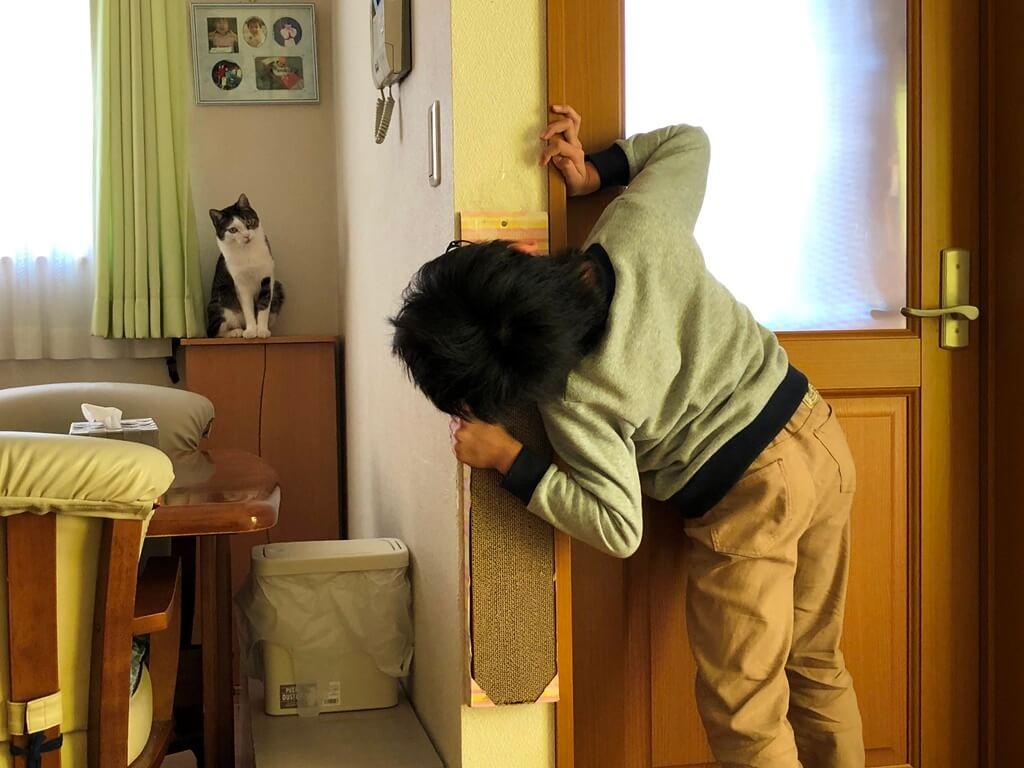 猫をひょっこり覗き返す少年 by ひょっこりdeにっこり賞受賞作品