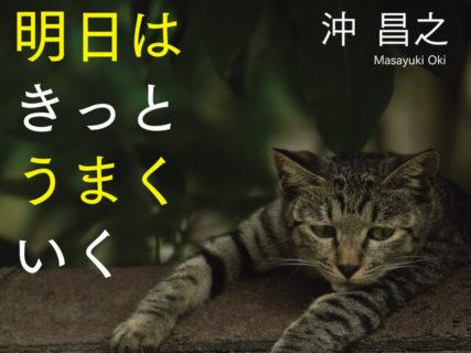 気分が落ち込んだ時に読みたい猫本、沖昌之さんの新刊「明日はきっとうまくいく」