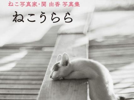 ふてニャンの写真家・関由香さんによるの初ベスト写真集「ねこうらら」が登場したニャ