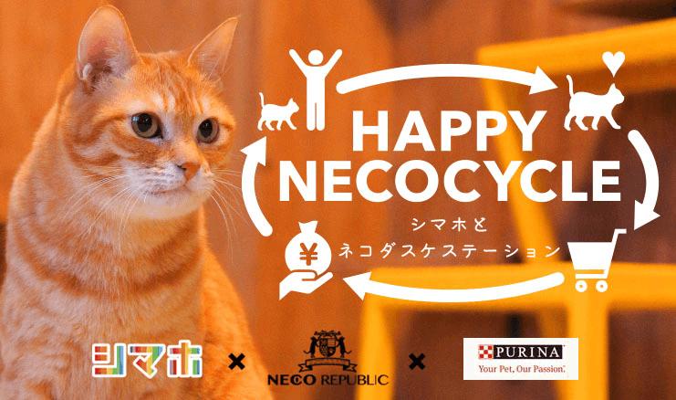 ネコリパブリック、ネスレ ピュリナ ペットケア、シマホ(島忠ホームズ)の保護猫啓発キャンペーン