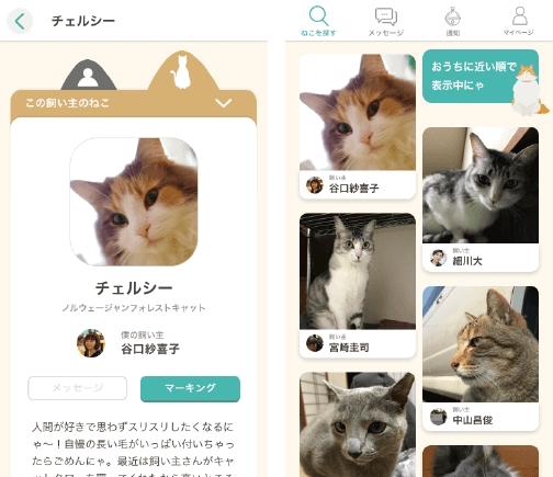 猫の「預かる&預ける」をマッチングする「nyatching(ニャッチング)」のサービス画面イメージ