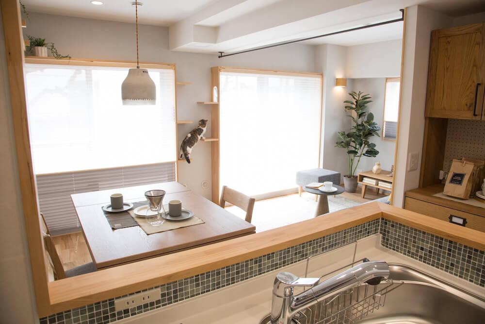 猫がいるリビングを見渡せるキッチンからの眺め by 「マイリノペット for ねこ」