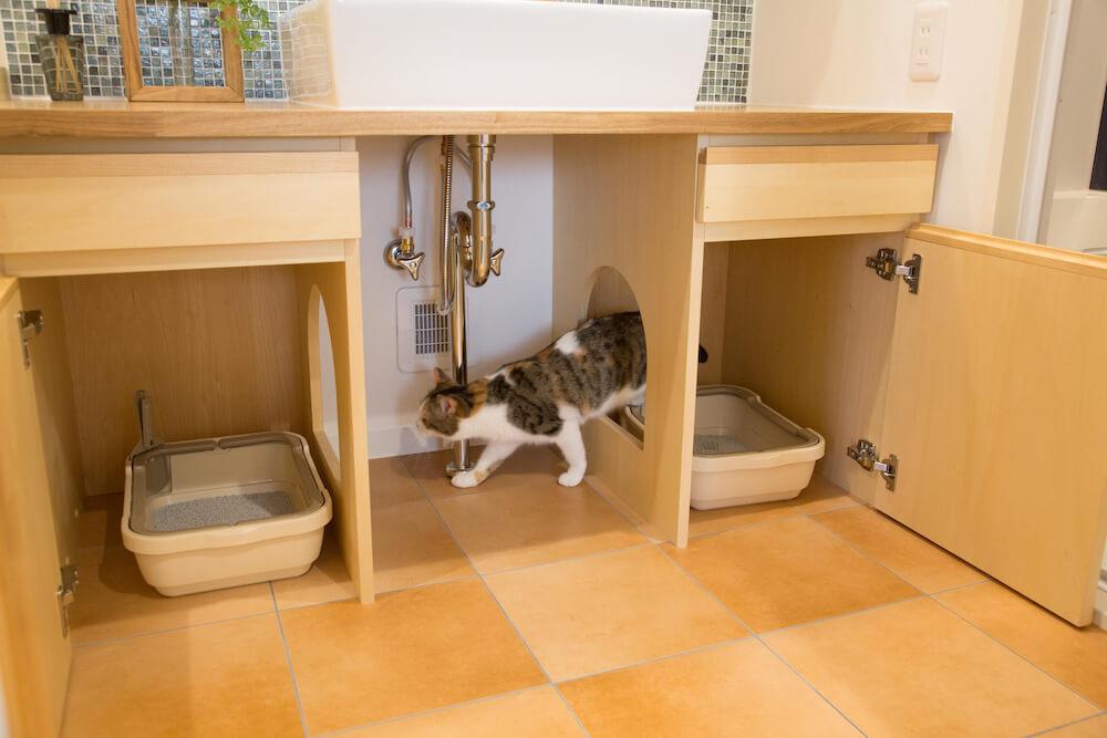 猫が自由にトイレに出入りしている様子 by猫用リノベーション「マイリノペット for ねこ」
