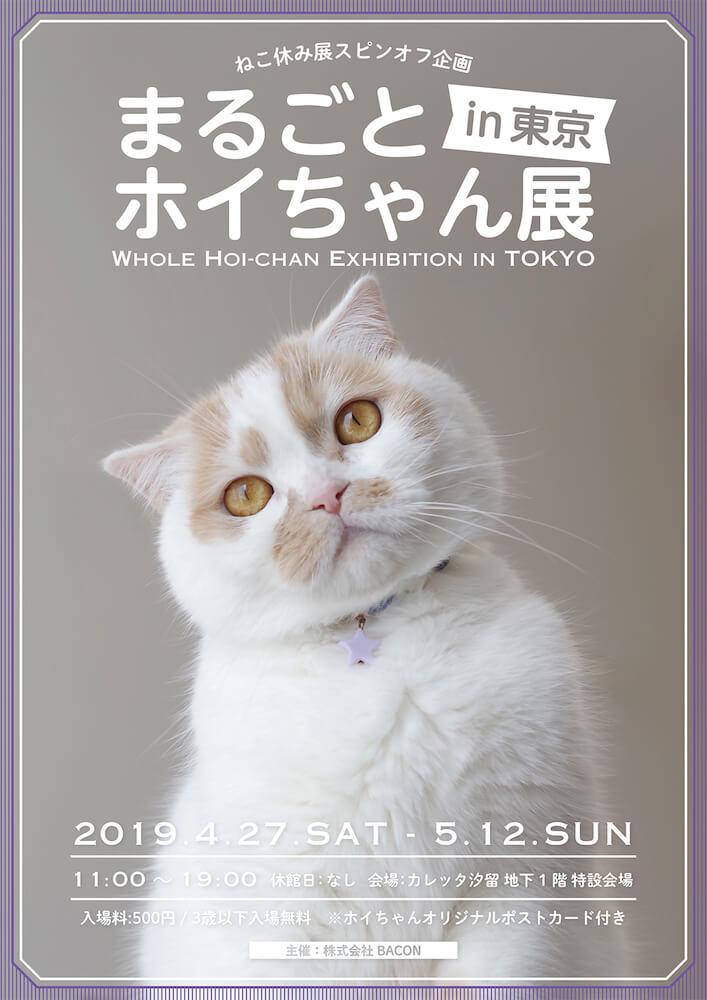 「まるごとホイちゃん展 in 東京」のメインビジュアル