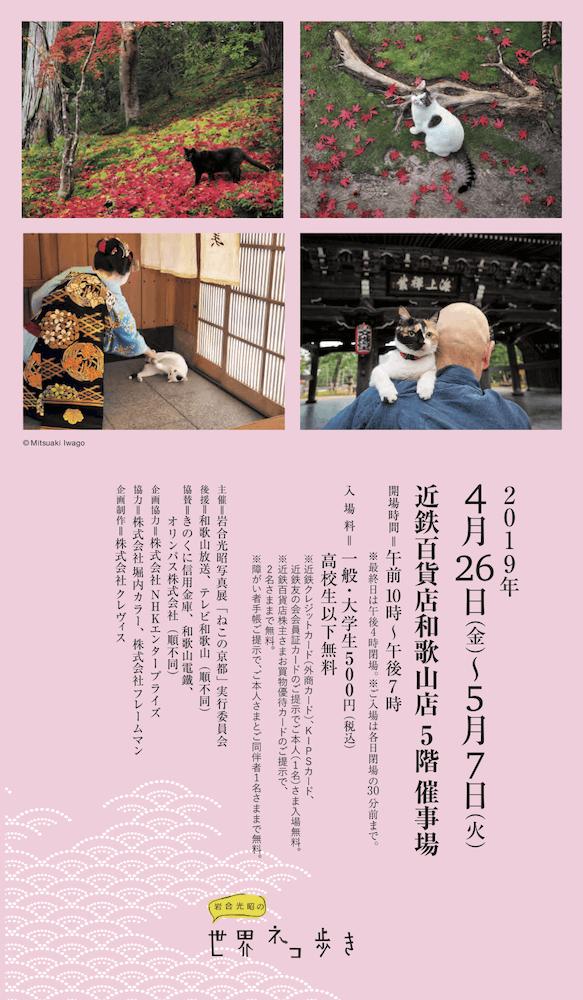 岩合光昭写真展「ねこの京都」 in 近鉄百貨店和歌山店