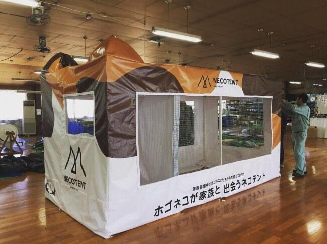 保護猫テント