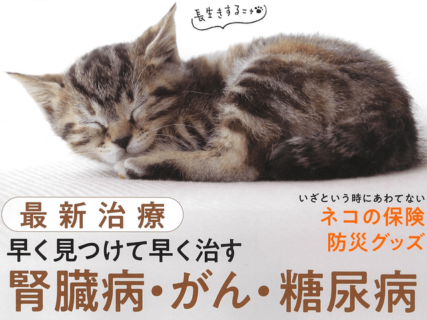 雑誌AERAの猫バージョン「NyAERA(ニャエラ)」、第4弾は「ネコの病気と老い」
