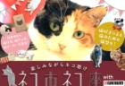 ケニア・ドイ氏による愛猫&愛犬撮影会もあるニャ!埼玉の島忠ホームズで猫助けイベントが開催
