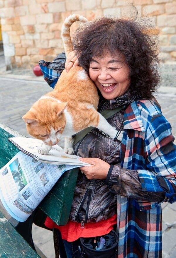 猫のダヤンの作者・池田あきこ