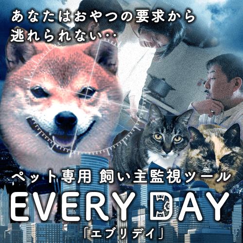 ペットが飼い主を監視することができるツール「EVERY DAY」