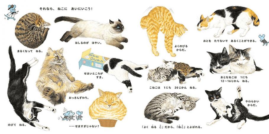大森裕子さんが描いたたくさんの猫イラストを収録 by ねこのずかん