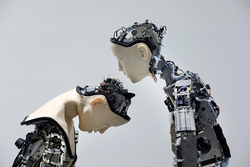 猫のアート作品「機械人間オルタ」 by土井 樹+小川浩平+池上高志+石黒 浩×ジュスティーヌ・エマール