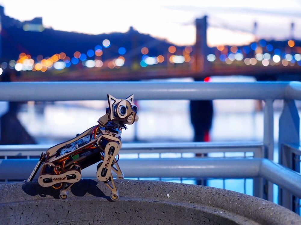 猫型ロボット「Nybble(ニブル)」を外で撮影したイメージ