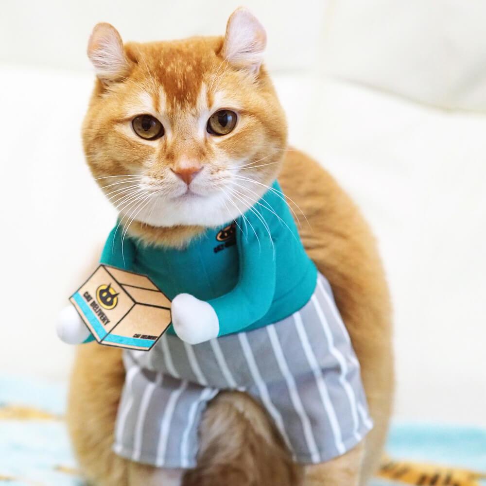 宅配便のお兄さんにコスプレした猫ののんたん by @nonhana0913