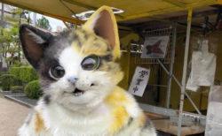 鳥取に出没する猫の焼き芋屋さんが話題に!オーダーメイドで猫スーツも制作するニャ