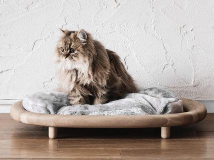 木の魅力を活かしたお洒落な猫ベッド、カリモク家具の猫用ブランド「KARIMOKU CAT」から発売