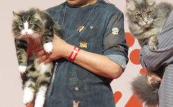 全部で208頭の猫が参加!日本最大級「ジャパンキャットショー」の開催風景を公開