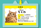 猫のお世話係を探せるnyatching(ニャッチング)、猫社員の入社と「なわばり」機能を発表