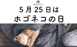 日本記念日協会が5月25日を「ホゴネコの日」として認定!保護猫のためのイベントも実施中