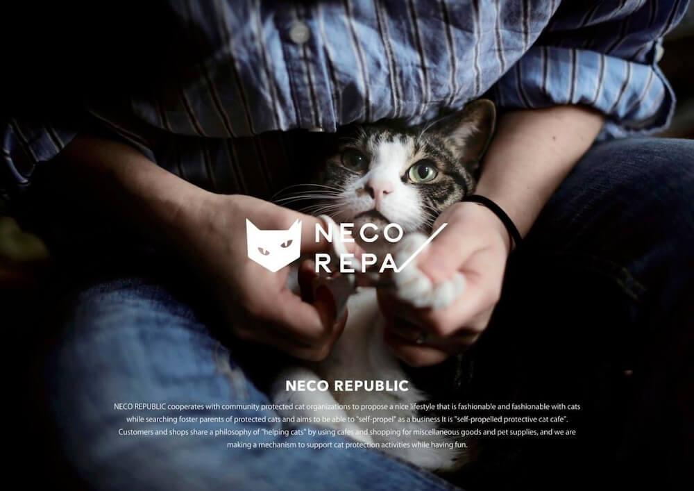 ネコリパブリックが展開するアパレル雑貨ブランド「NECOREPA(ネコリパ)