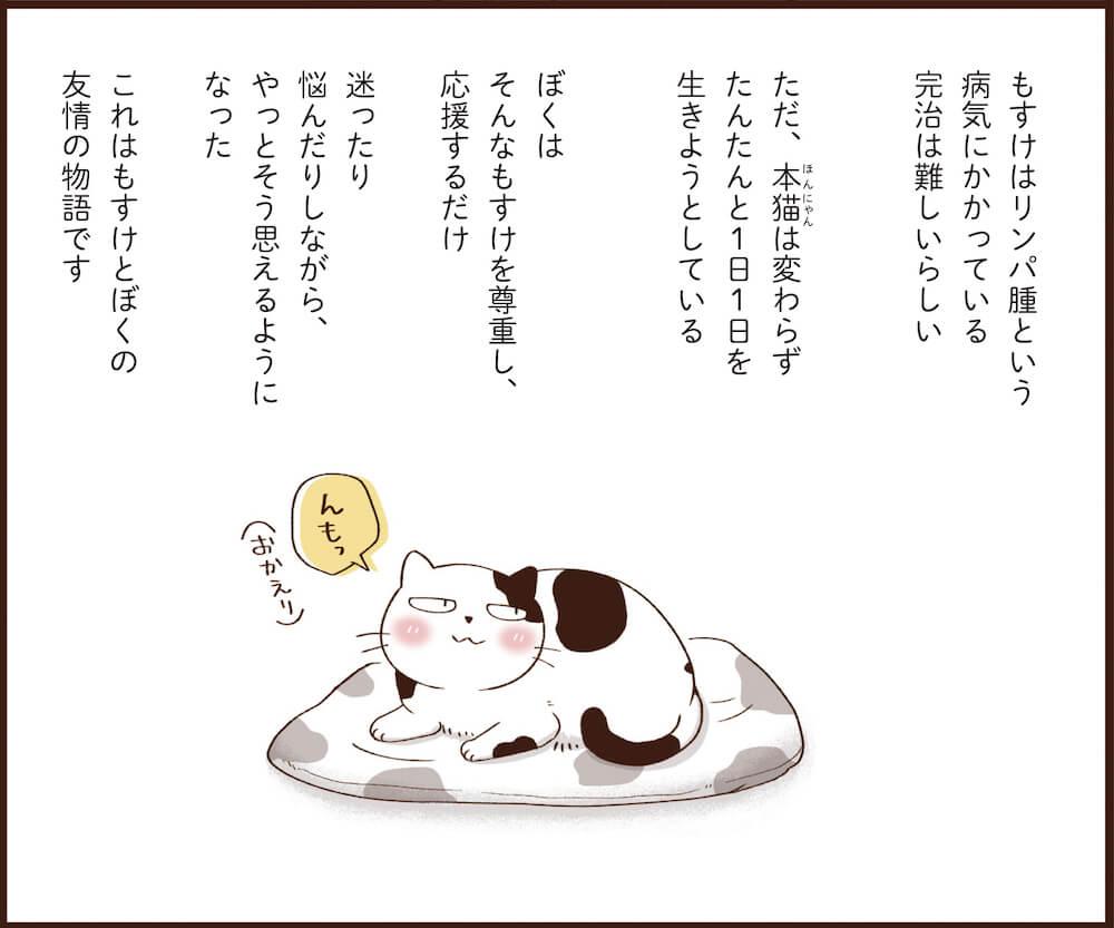 書籍「まんがで読む はじめての猫のターミナルケア・看取り」のマンガ部分