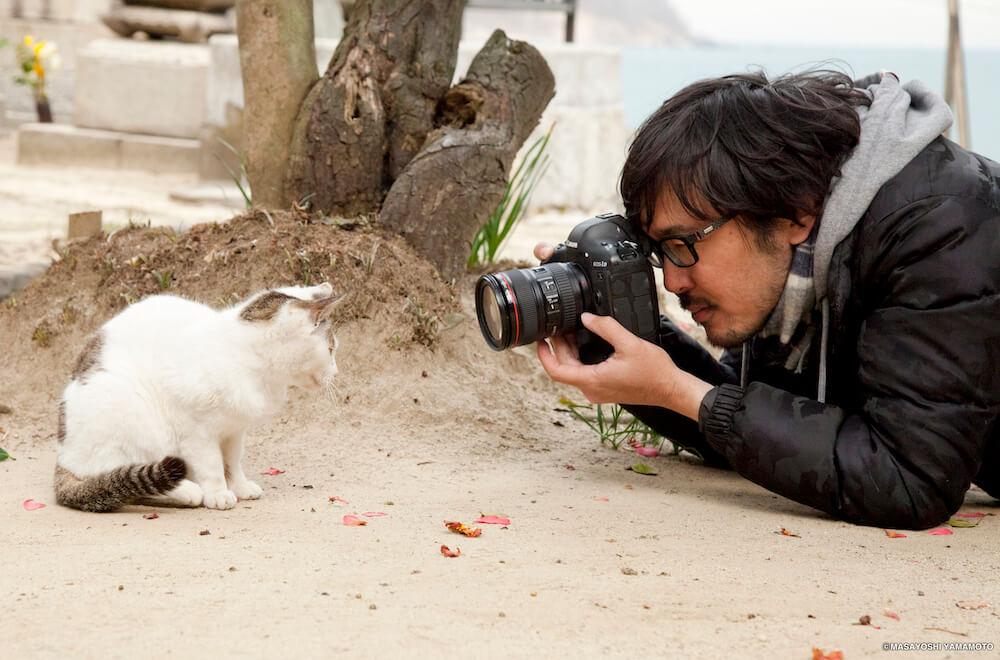 猫の至近距離で撮影する猫写真家の沖昌之さん