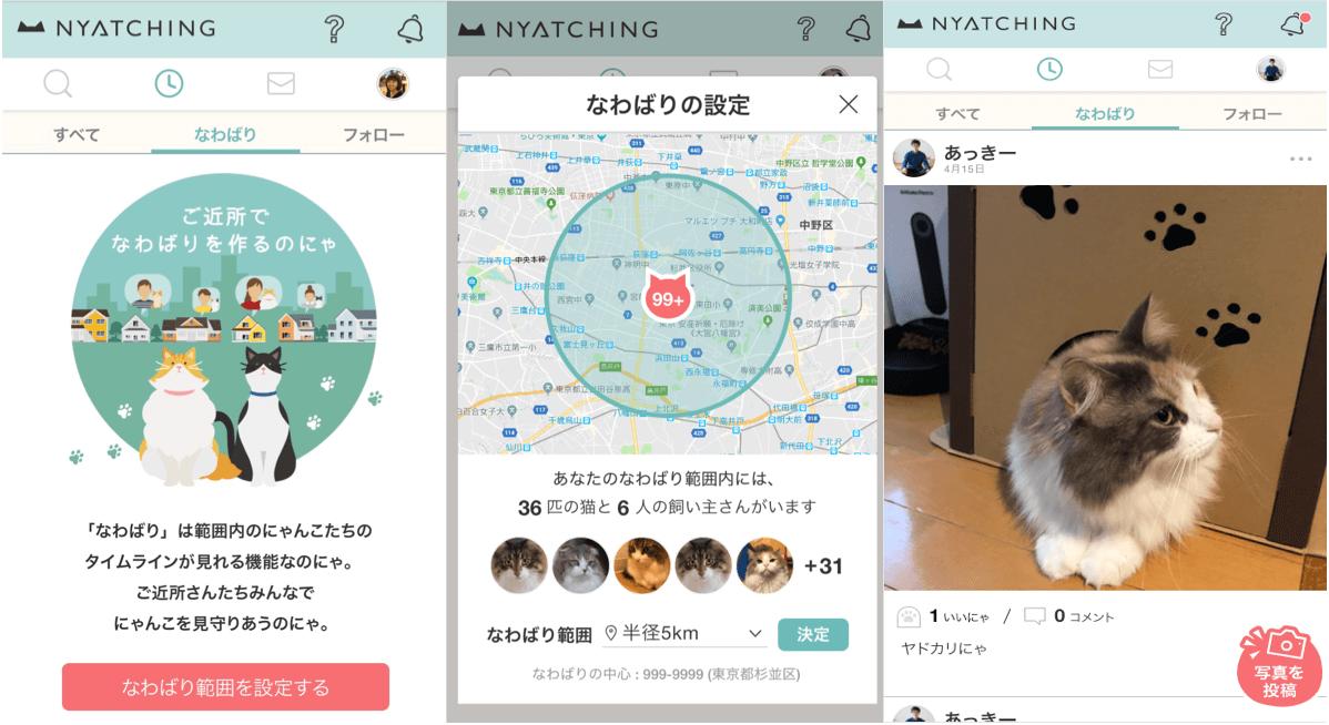 周囲の猫の状況を把握する「なわばり」機能の画面イメージ by nyatching(ニャッチング)