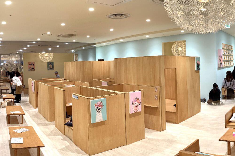 猫と半個室で触れ合える「Moff animal cafe」の店内イメージ