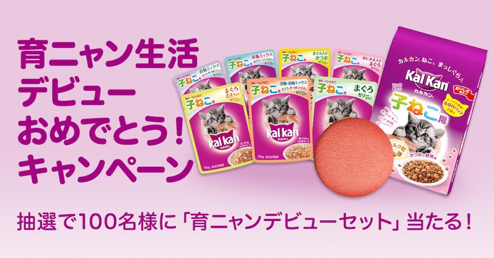育ニャン生活デビューおめでとう!キャンペーンのプレゼントイメージ