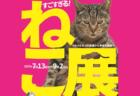 ココリコ田中のトークショーもあるニャ〜「すごすぎる!ねこ展」7/13〜山梨県立博物館で開催