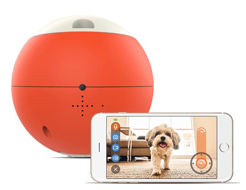 ペット用の球体型おもちゃ「easyPlay(イージープレイ)」