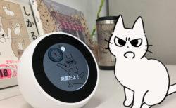 時間になると「しかるねこ」が声で知らせてくれる、Amazonの音声サービスAlexaに対応