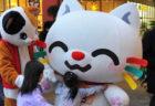 人気の福ねこ弁当も販売、猫のハンドメイド雑貨が集まる「ねこたま祭!」6/8から埼玉・川口で開催