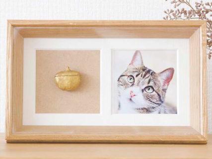 ペットの骨壷や写真を飾ったり持ち運べる「Recolle(レコレ)」、多様化する供養ニーズに対応